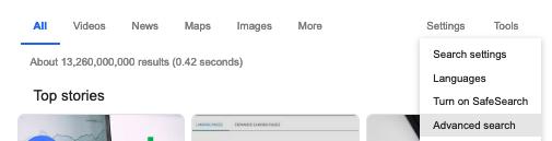 Screen Shot Advanced Google PDF Search
